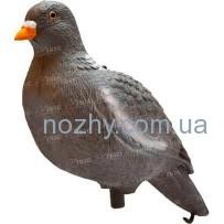 Подсадной голубь Birdland